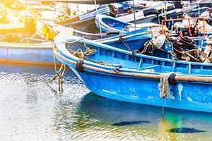 La ruta del atún: viajes al corazón de la pesca