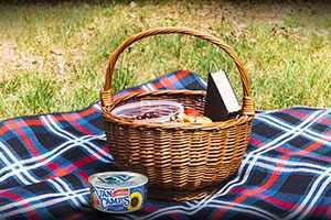 Aprende qué es un pícnic y las claves para organizar uno
