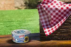 Cómo hacer una canastica tipo pícnic para tu viaje